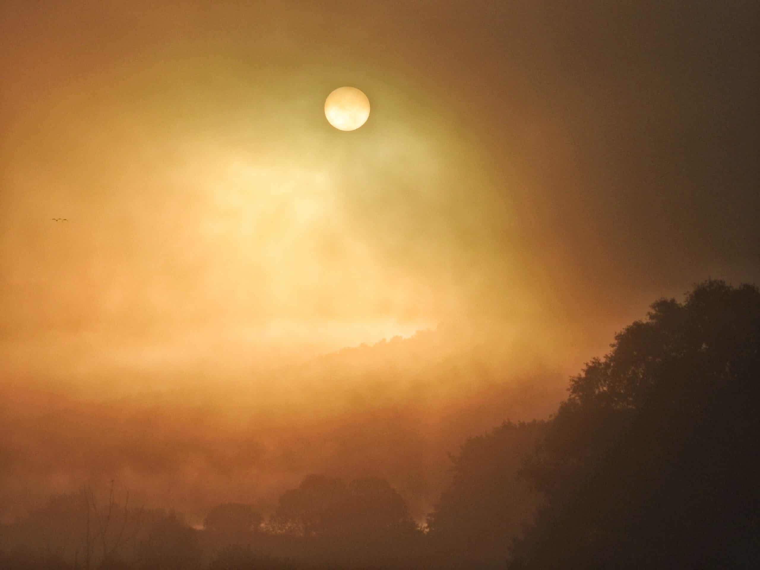 Következő napok: köd és napsütés harca! (0 vs 18 fok) 5