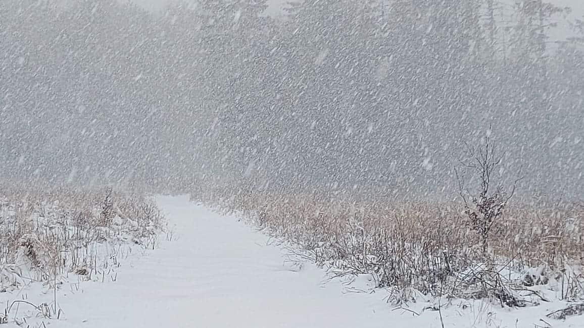 Egyre több helyen intenzív havazás! - Videókkal! 1