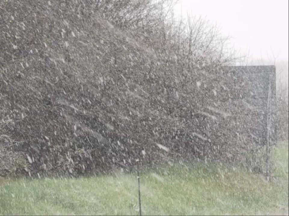 Szakad a hó a dunántúli hegyekben! 1