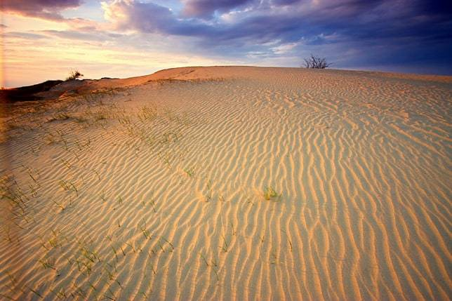 Sivatag Magyarországon! 5
