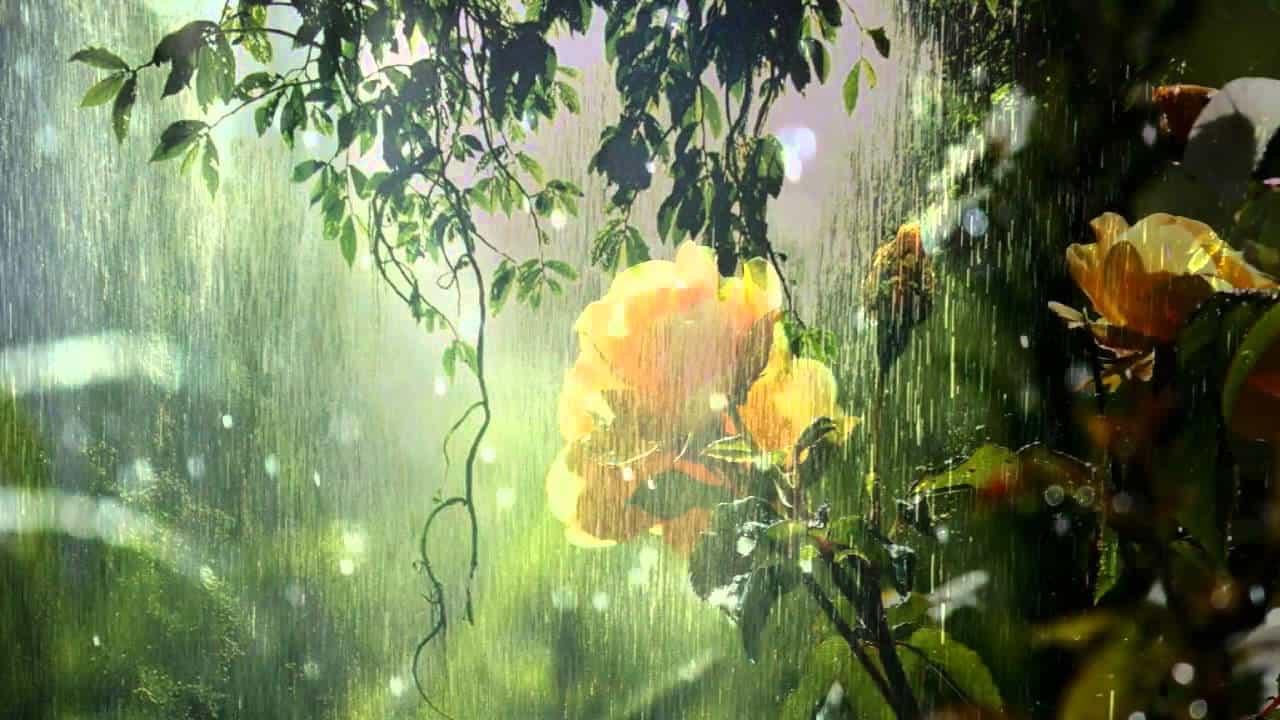 Eső után most nem köpönyeg, hanem nyári meleg jön, na de meddig tart? 1