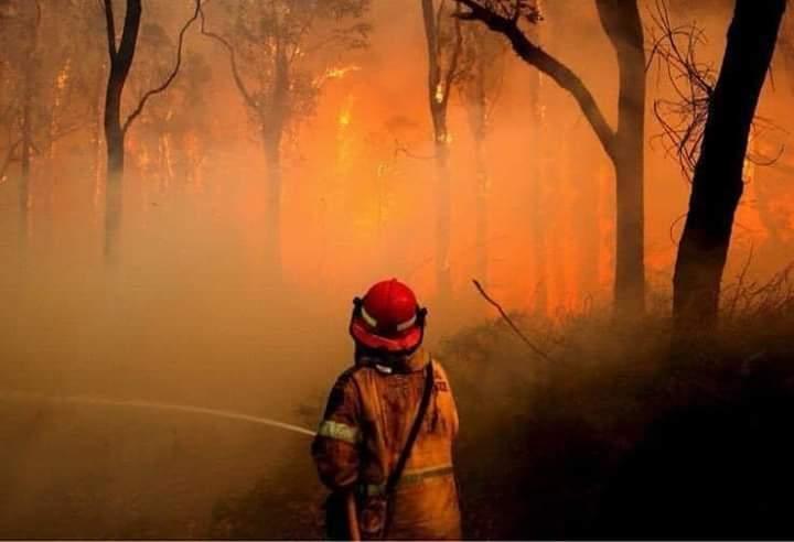 Lángokban Ausztrália! Drámai videók a tűzből. 7
