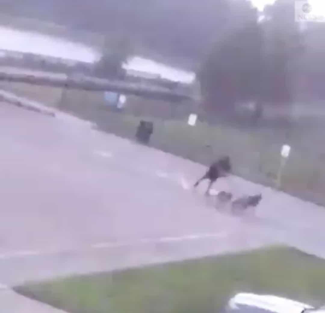 Kutyasétáltatás közben csapott a férfibe a villám!(Videó) 8
