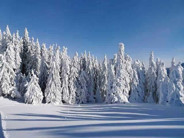 Varázslatos havas táj Romániából!(képek, videó) 2