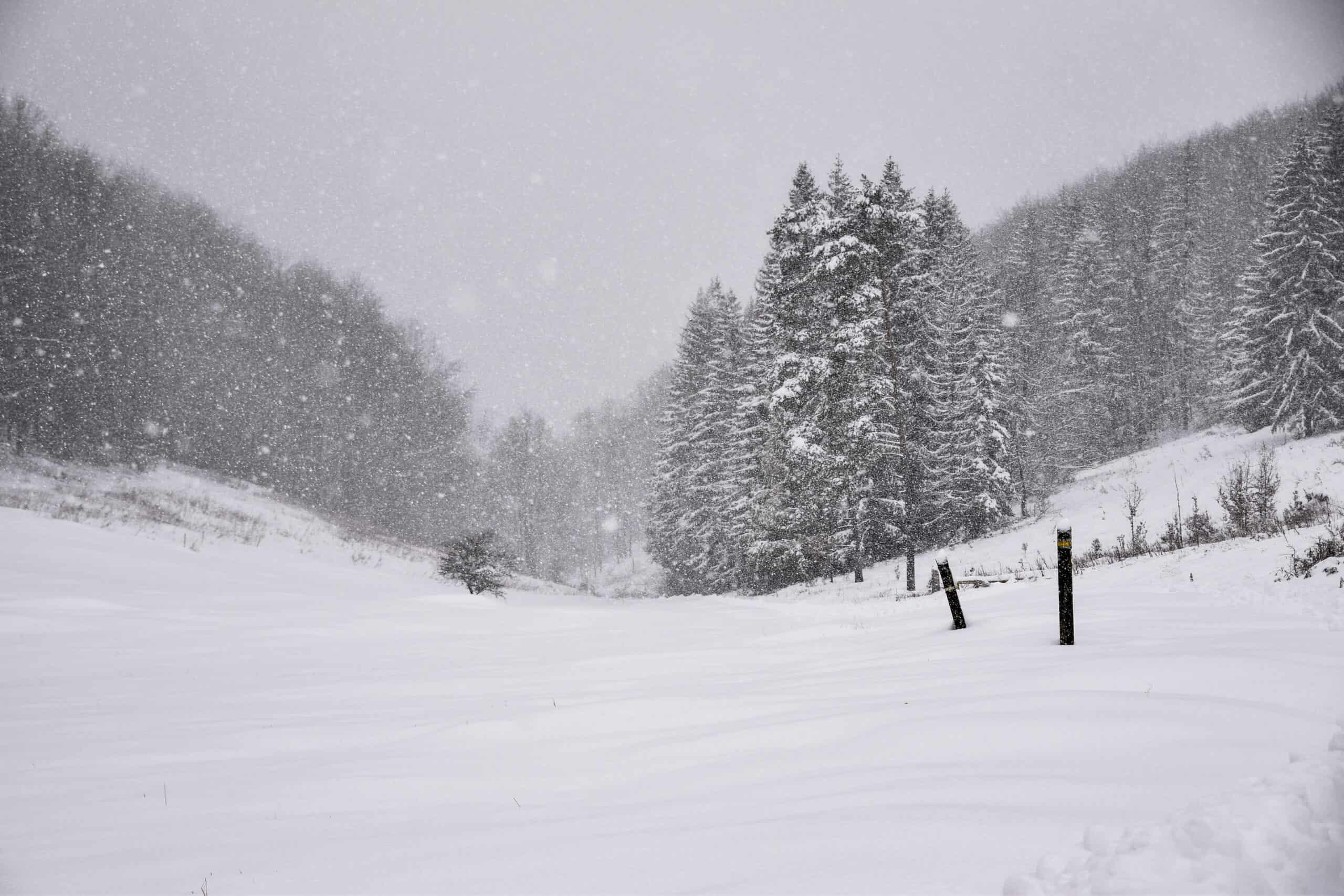 Fél méter hó a Bükkben! Képek, videók! 4
