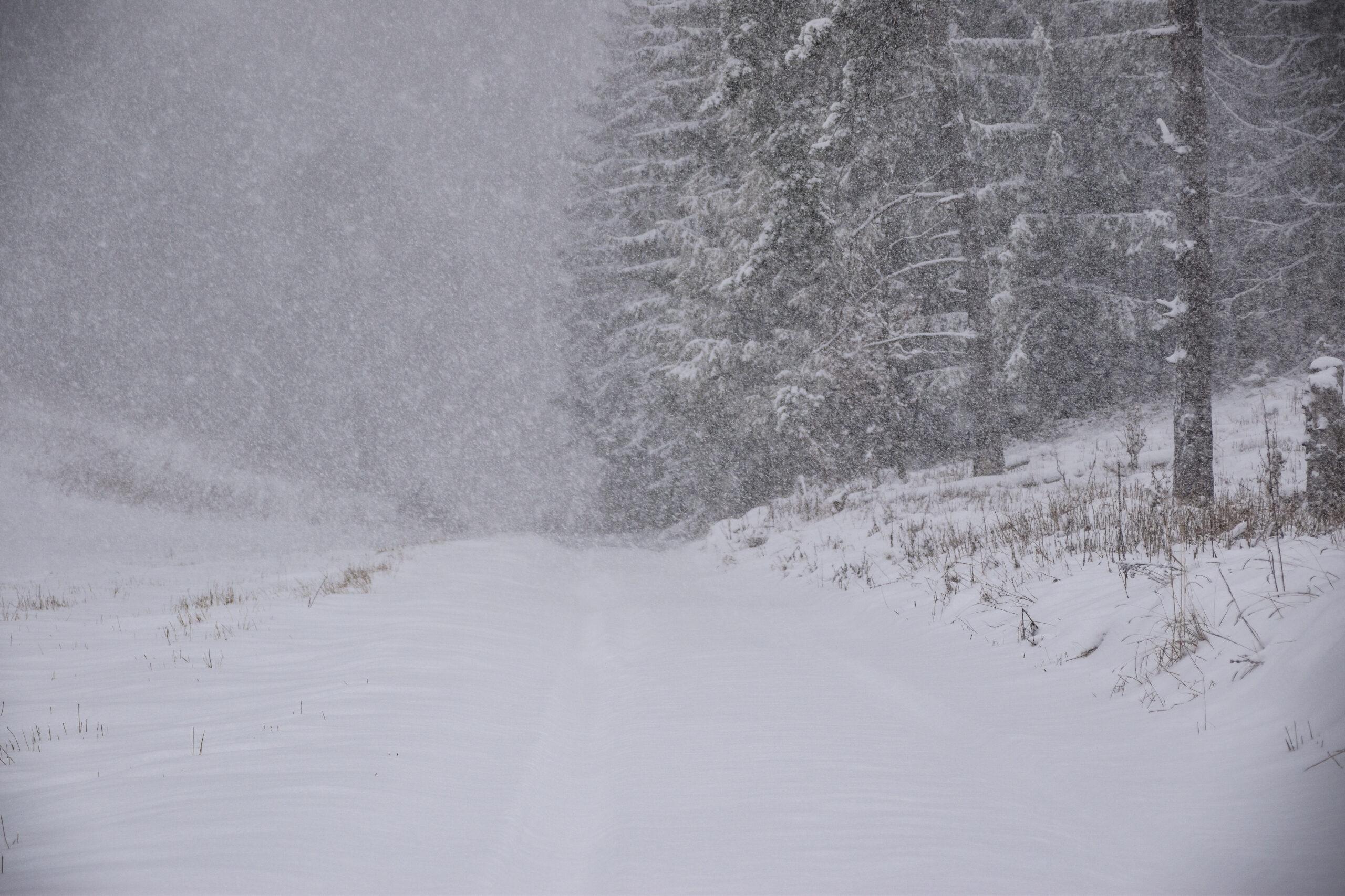 VIDEÓ: Kifehéredtek a hegyek, szakad a hó északi szomszédunknál! 1