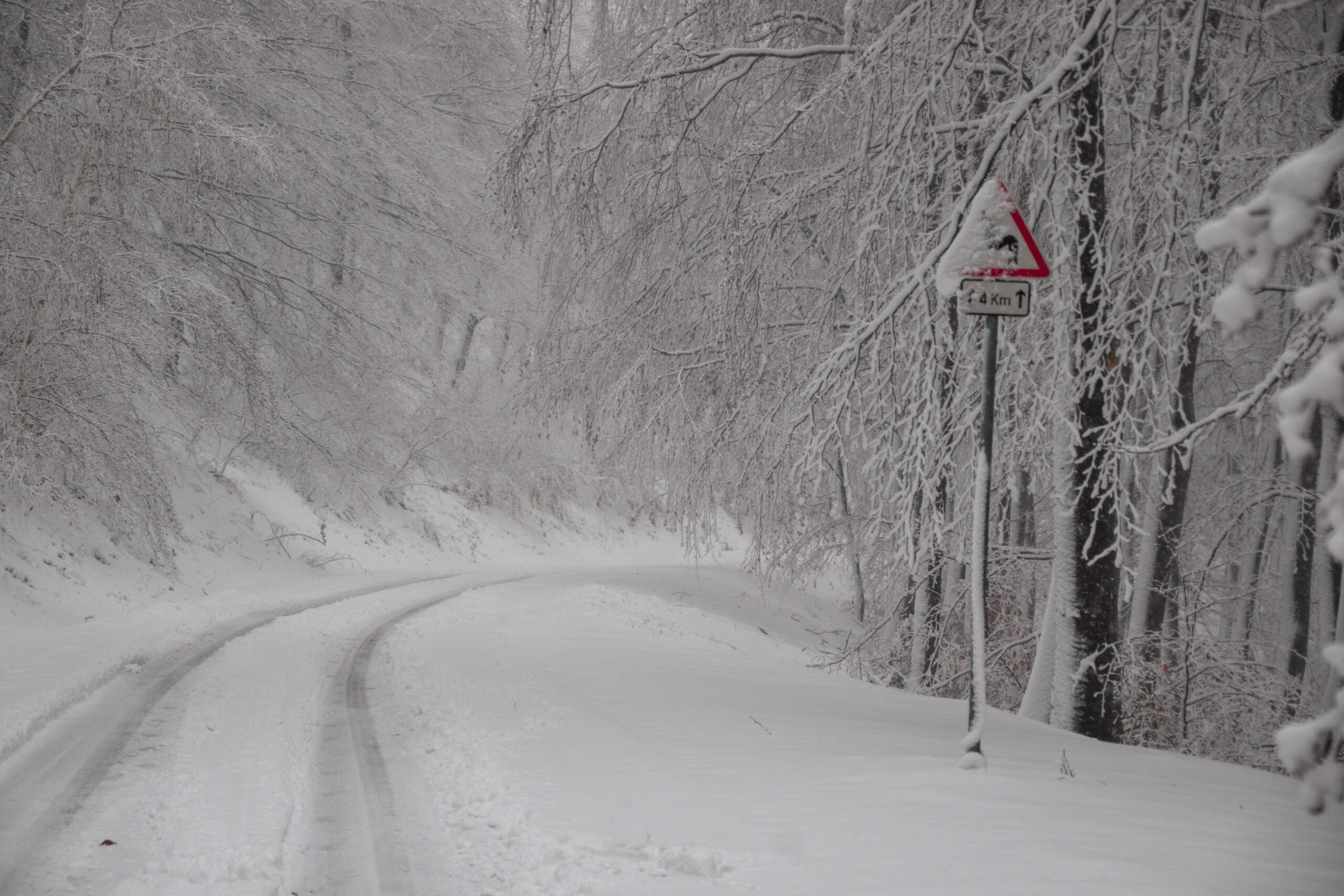 30 cm hó, varázslatos téli erdő, fenyvesek, elakadt autók a Kőszegi-hegységben! (Képek, videók) 8