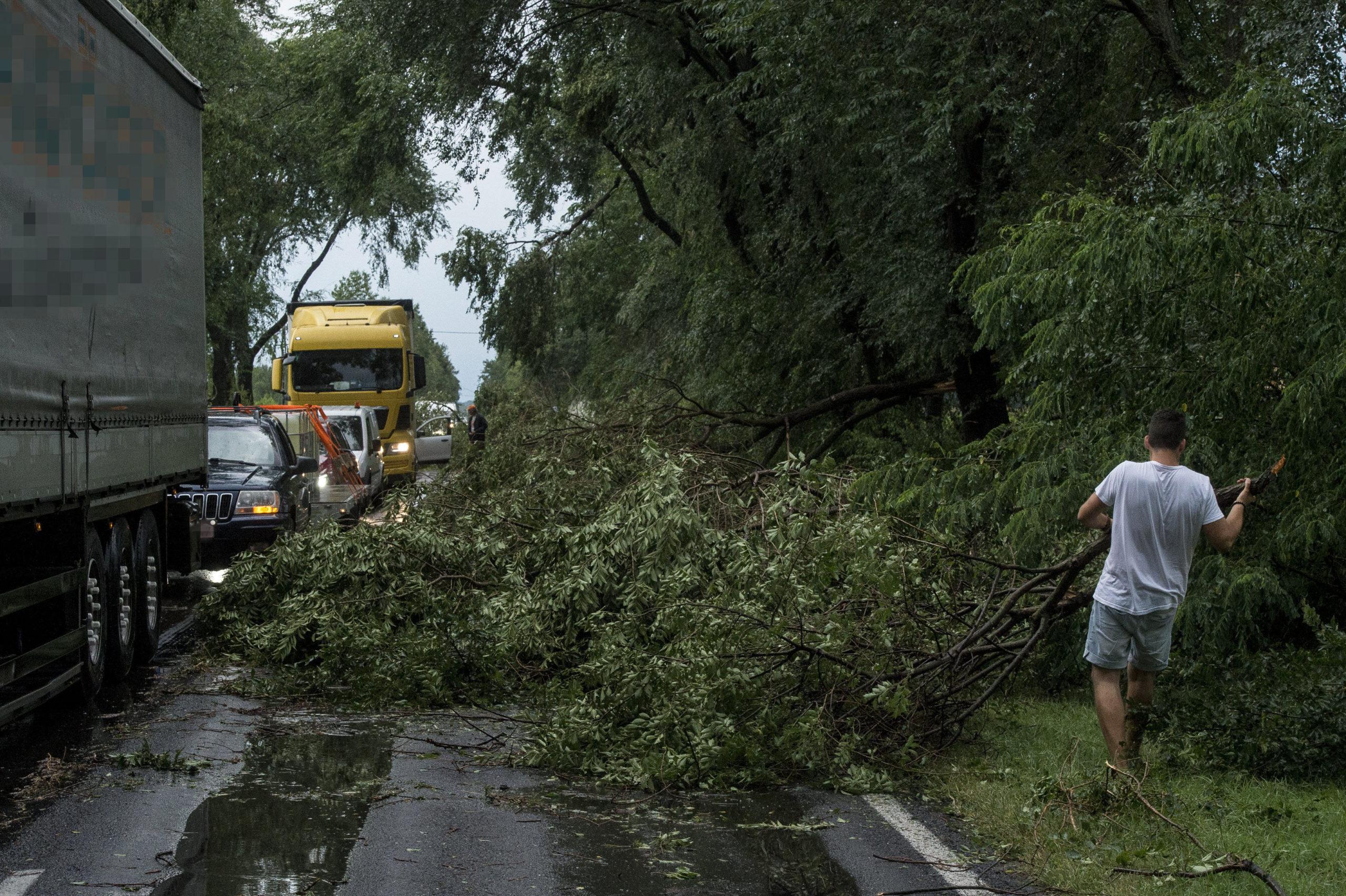 Tarol a vihar Pest megyében, közel orkán erejű szél tombol! 1