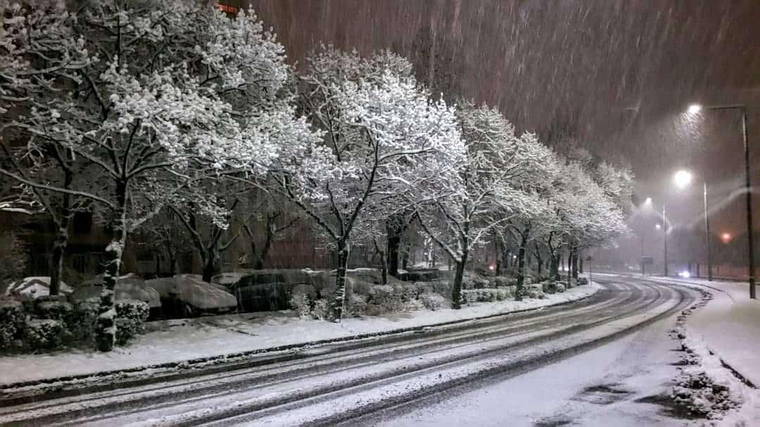 30cm-es hó hullott délnyugaton és messze még a vége!(képek) 3