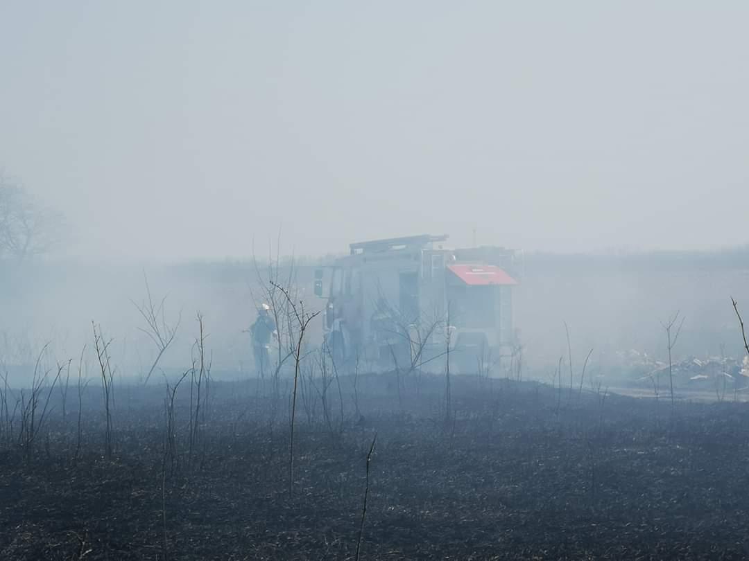 Bashalom Térségében nagy területen lángol a nádas!(képek) 4