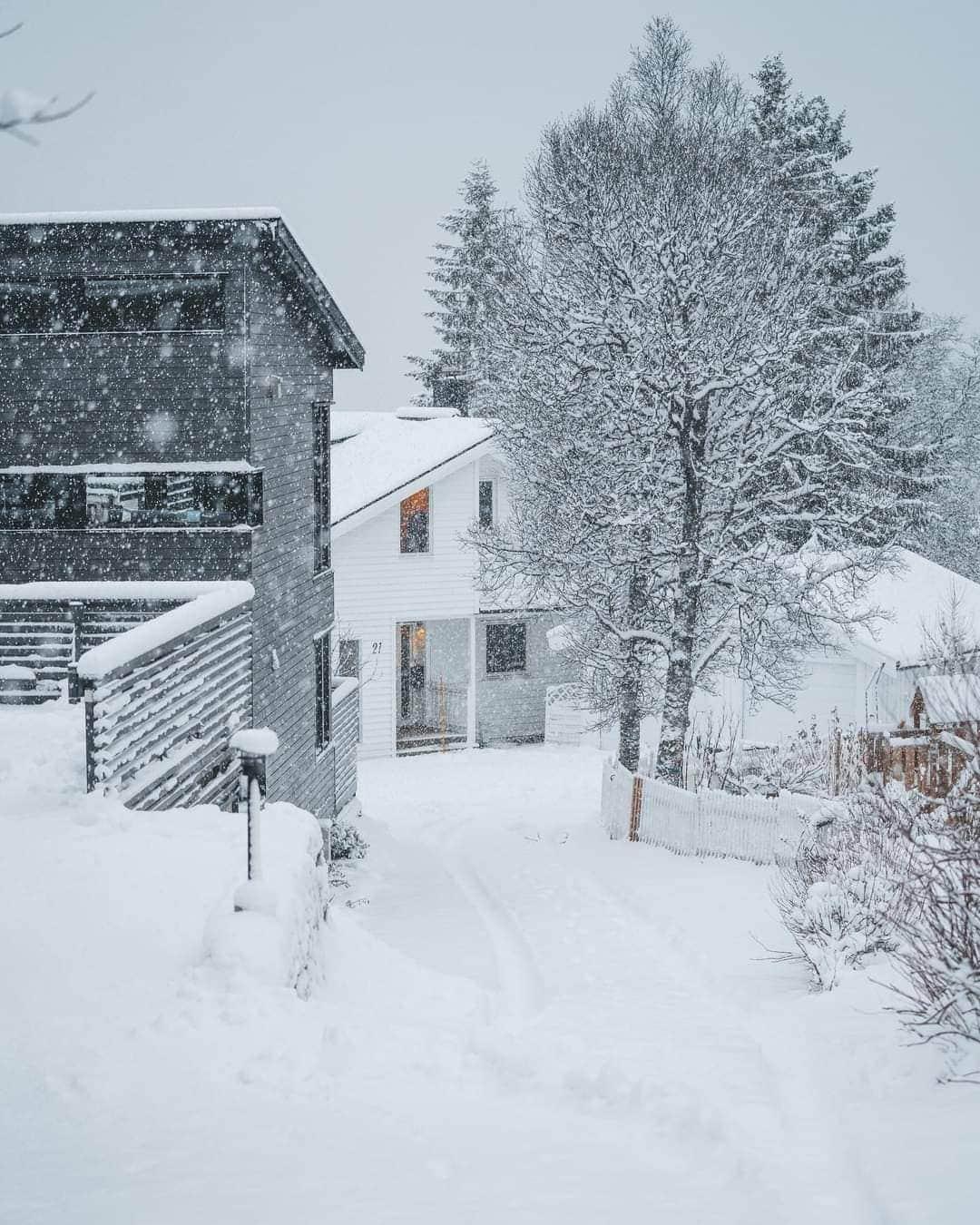 Varázslatos mai havas képek, videó Norvégiából! 3