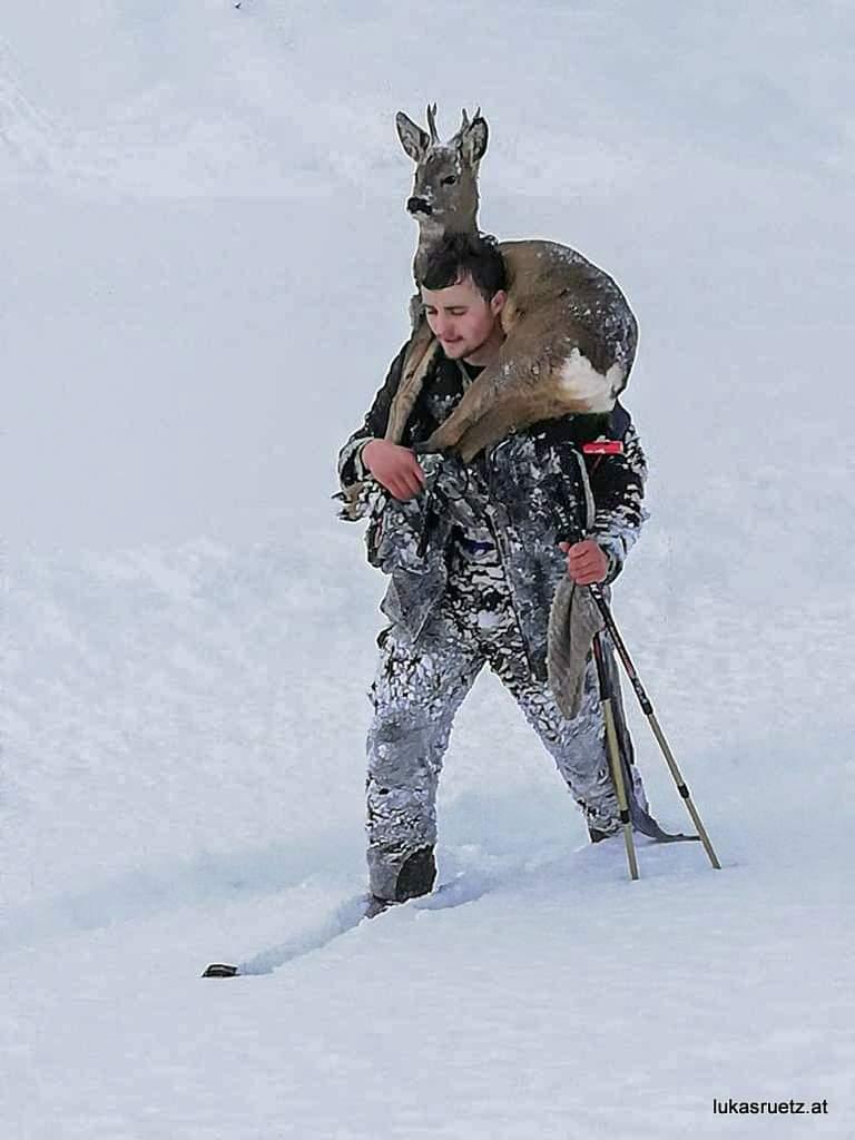Őzeket mentettek a vadászok a hatalmas hóból! (Képek) 7