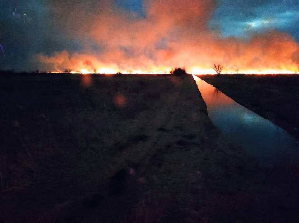 Tűz pusztít a Balatonnál! (Képek) 7