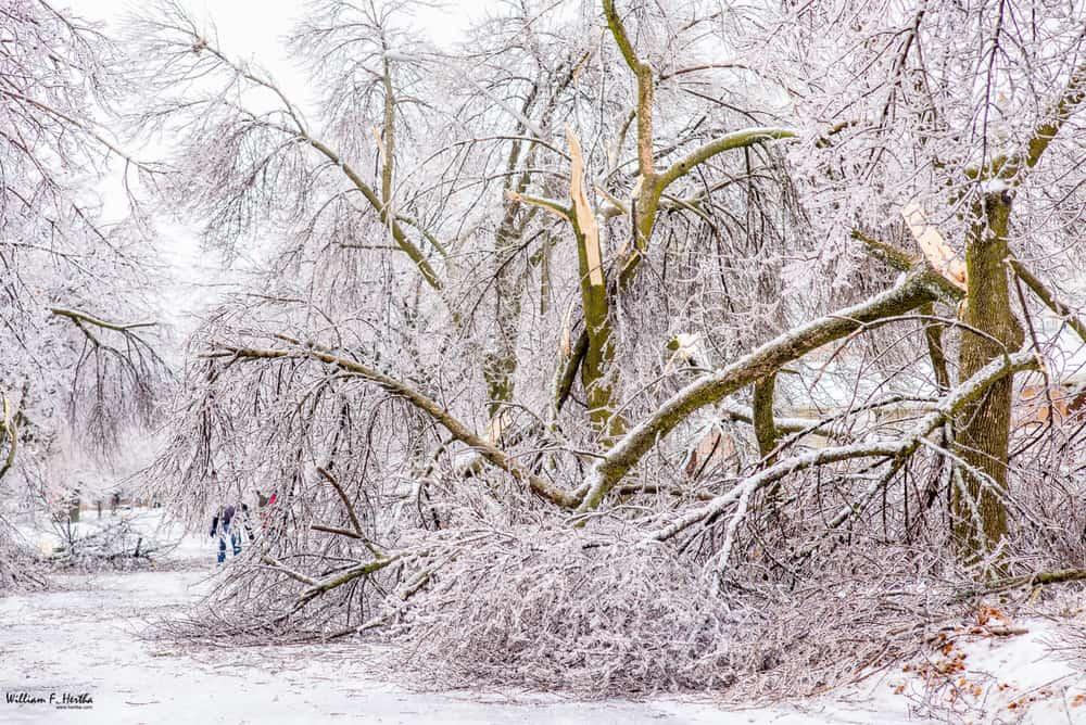 Viharos szél, havazás, erős lehűlés! 4