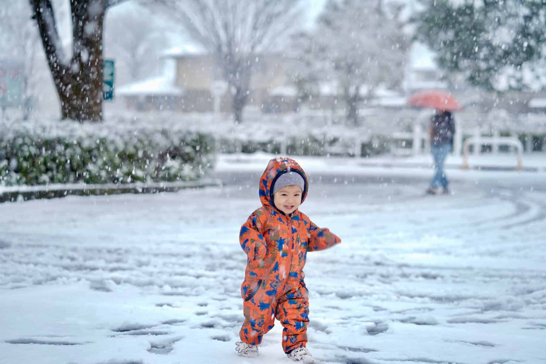 Szakad a hó a Bükkben! Már fehéredik a táj! 5