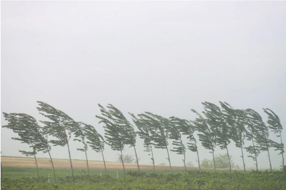Mai időjárás: szeles idő, elszórtan hózáporok! 8