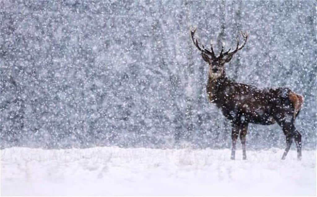 Sokfelé havazik, zivatar is lehet! 10