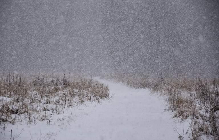 Szomszédjainknál havazik, kifehéredtek a csúcsok! 1