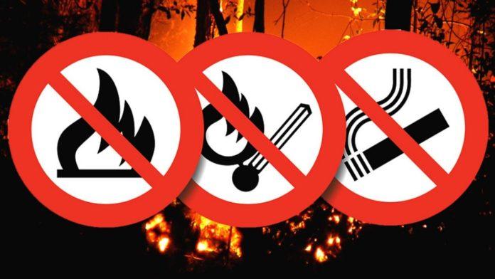 Szárazság: Az egész országban tűzgyújtási tilalom van érvényben! 3