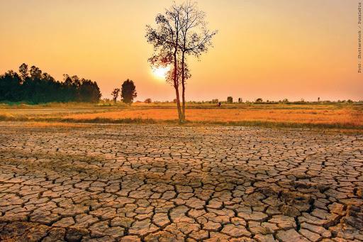 Fokozódó szárazság, aszály sújtja a mezőgazdaságot a fagykárok után 8
